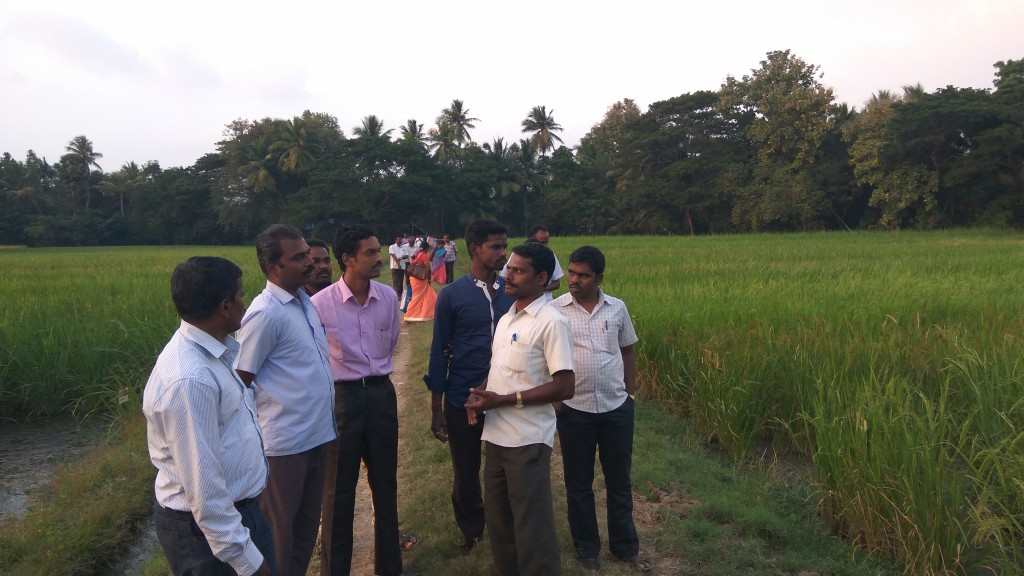 A team of Puthuvazhvu thittam from Nagapattinam visit to traditional paddy conservation field at Agani